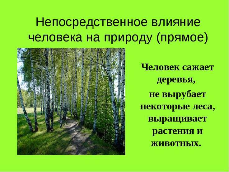 Непосредственное влияние человека на природу (прямое) Человек сажает деревья,...