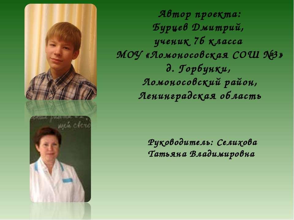 Автор проекта: Бурцев Дмитрий, ученик 7б класса МОУ «Ломоносовская СОШ №3» д....