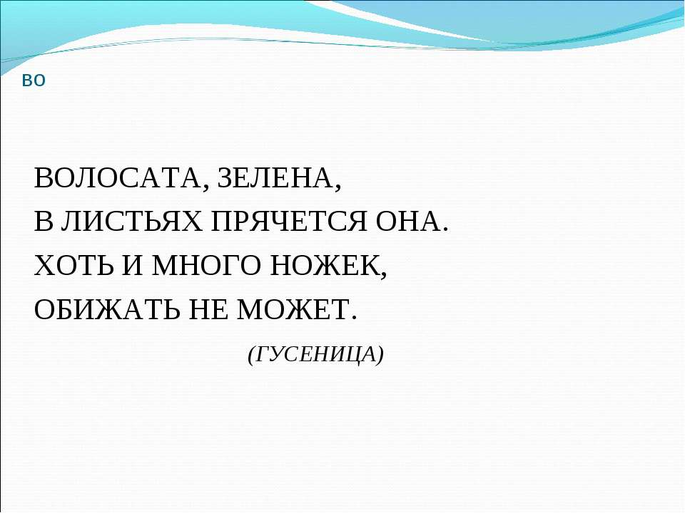 во ВОЛОСАТА, ЗЕЛЕНА, В ЛИСТЬЯХ ПРЯЧЕТСЯ ОНА. ХОТЬ И МНОГО НОЖЕК, ОБИЖАТЬ НЕ М...