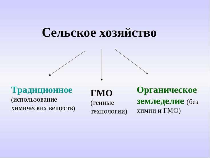 Сельское хозяйство Традиционное (использование химических веществ) ГМО (генны...