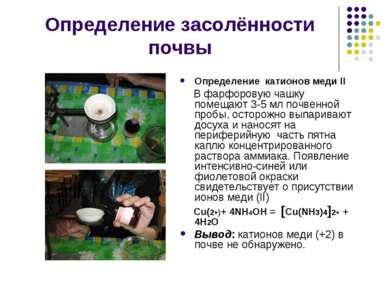 Определение засолённости почвы Определение катионов меди II В фарфоровую чашк...
