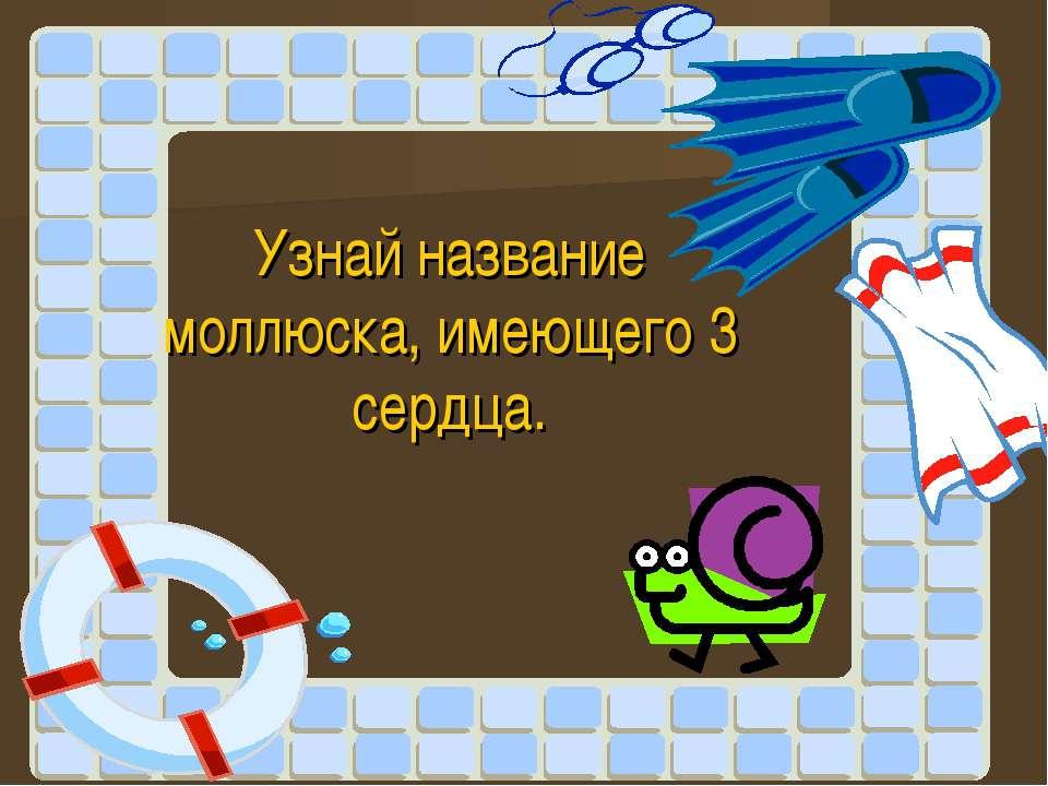 Узнай название моллюска, имеющего 3 сердца.