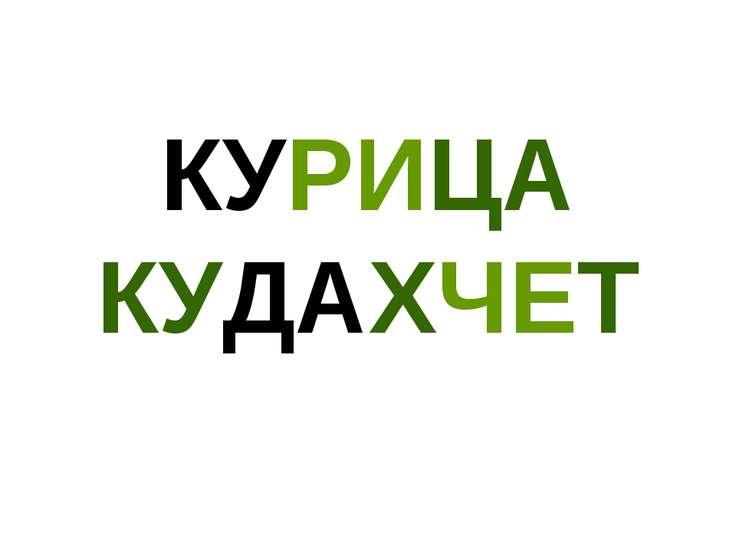 КУРИЦА КУДАХЧЕТ