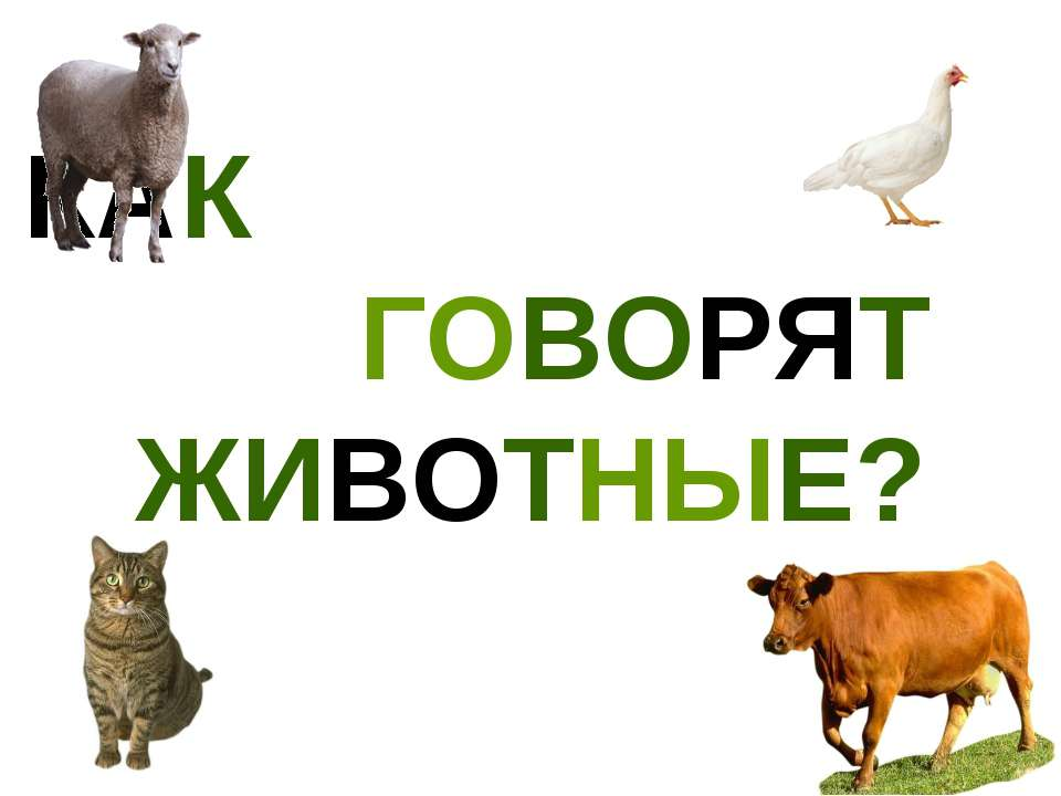 Презентации про животных со звуками