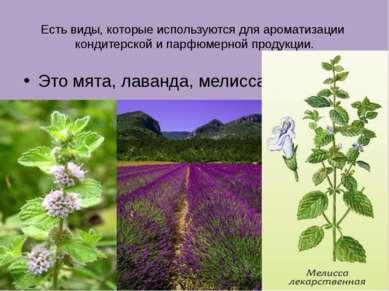 Есть виды, которые используются для ароматизации кондитерской и парфюмерной п...