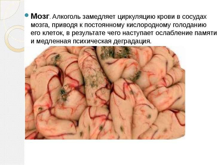 Мозг. Алкоголь замедляет циркуляцию крови в сосудах мозга, приводя к постоянн...
