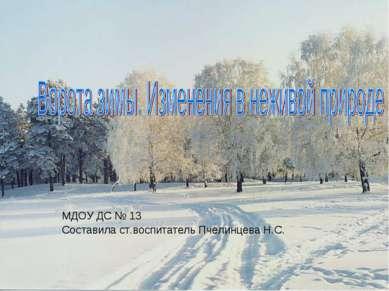 МДОУ ДС № 13 Составила ст.воспитатель Пчелинцева Н.С.