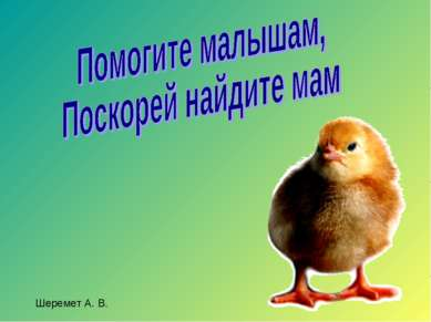 Шеремет А. В.