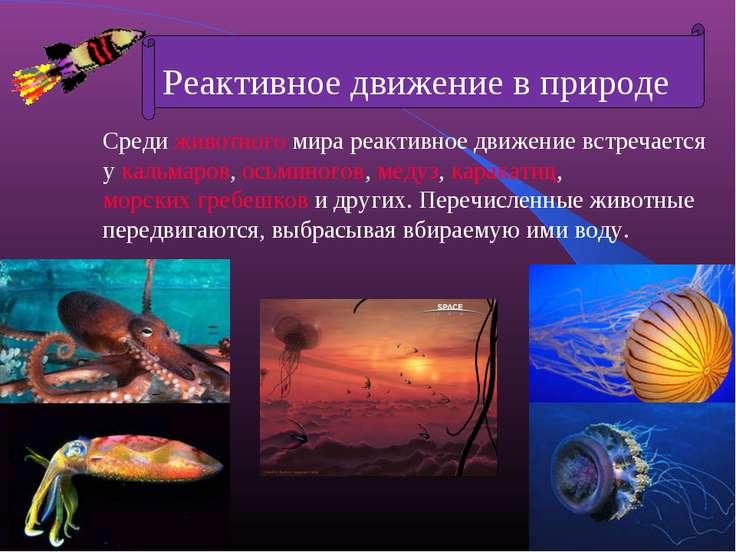 Среди животного мира реактивное движение встречается у кальмаров, осьминогов,...