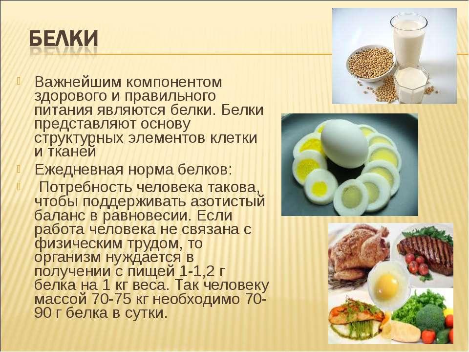 Важнейшим компонентом здорового и правильного питания являются белки. Белки п...