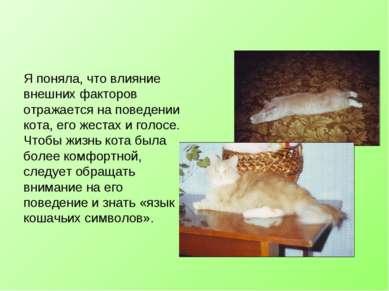 Я поняла, что влияние внешних факторов отражается на поведении кота, его жест...