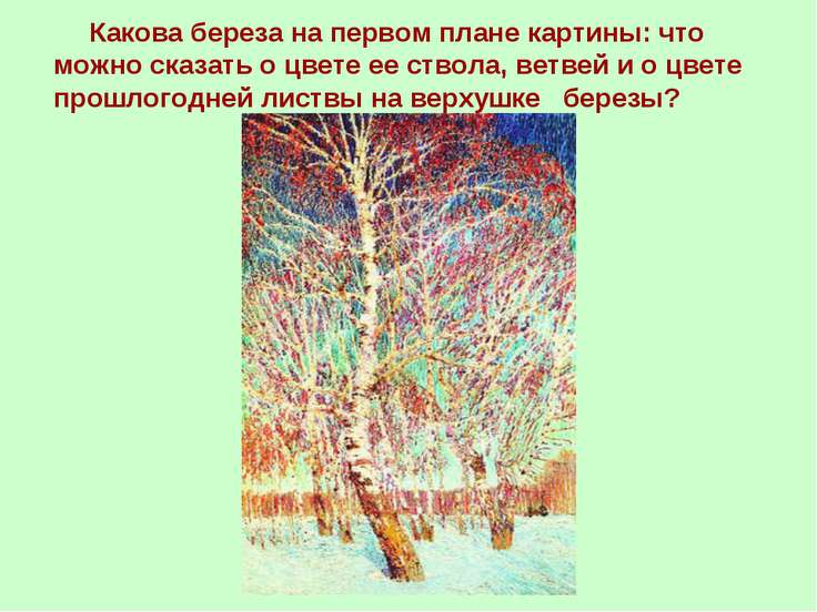 Какова береза на первом плане картины: что можно сказать о цвете ее ствола, в...