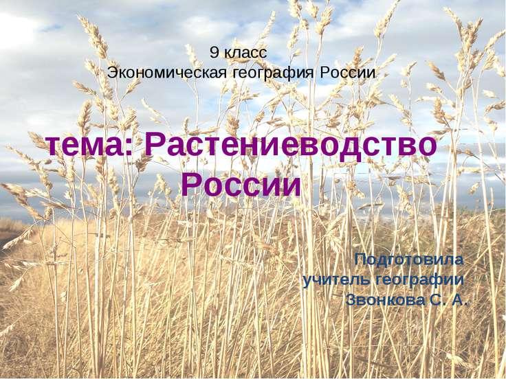 9 класс Экономическая география России тема: Растениеводство России Подготови...