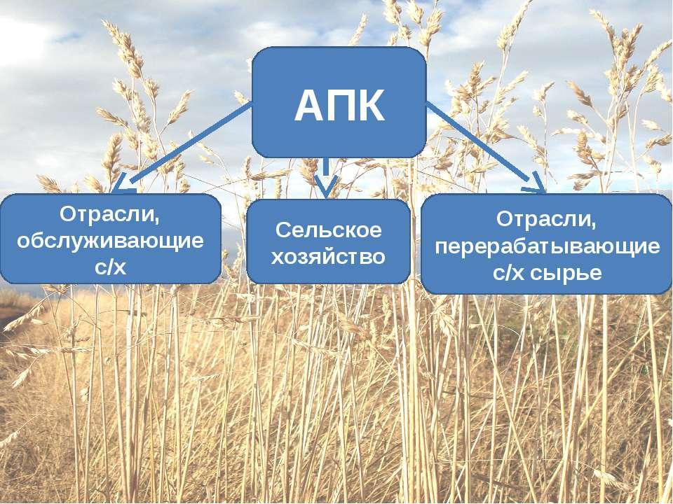 Сельское хозяйство Отрасли, перерабатывающие с/х сырье Отрасли, обслуживающие...