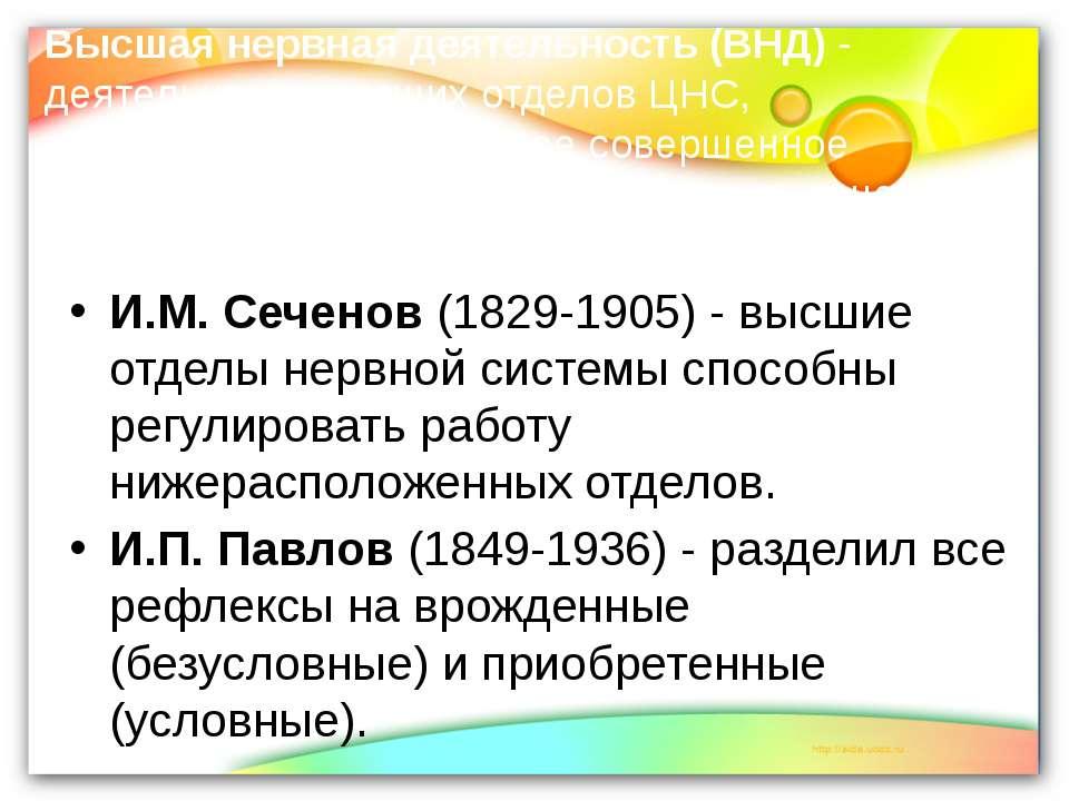 Высшая нервная деятельность (ВНД) - деятельность высших отделов ЦНС, обеспечи...