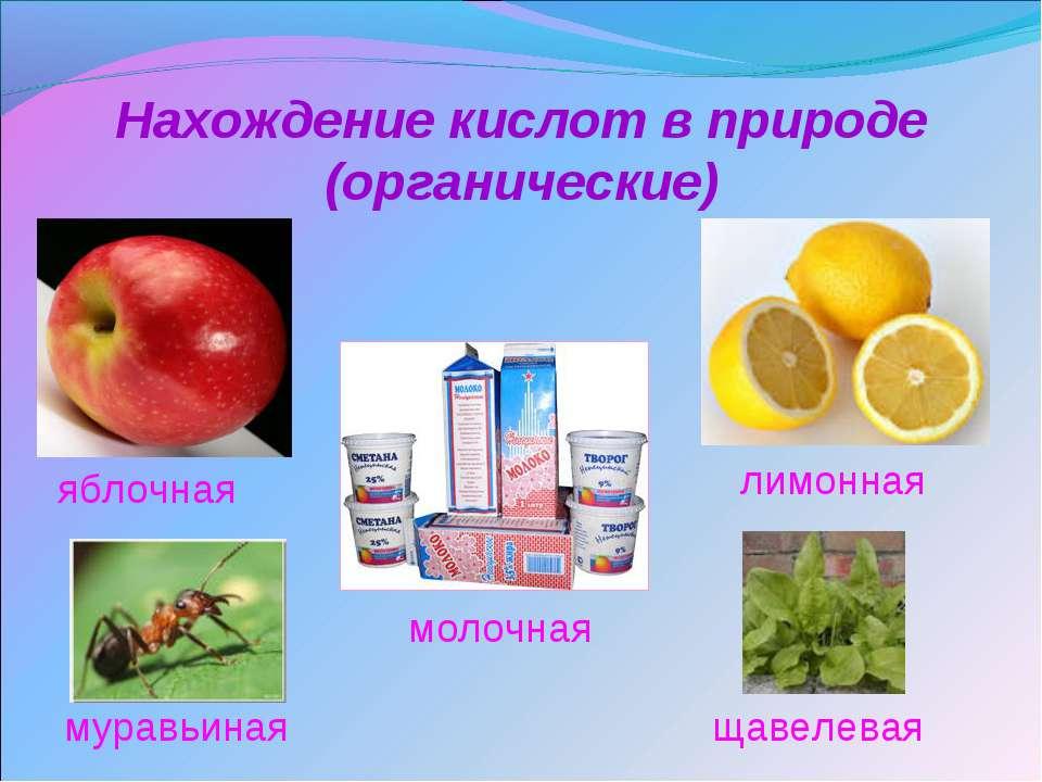 Нахождение кислот в природе (органические) яблочная щавелевая муравьиная лимо...
