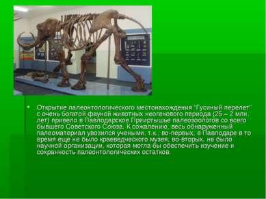 """Открытие палеонтологического местонахождения """"Гусиный перелет"""" с очень богато..."""