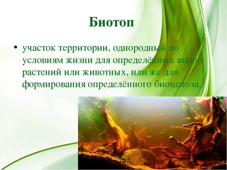 Биотоп участок территории, однородный по условиям жизни для определённых видо...