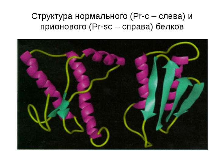 Структура нормального (Pr-c – слева) и прионового (Pr-sc – справа) белков