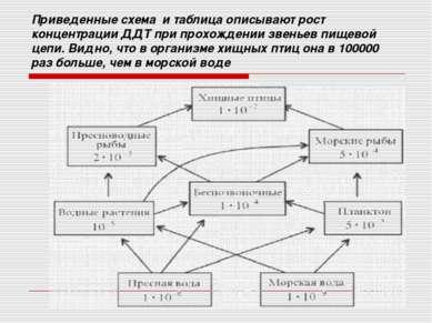 Приведенные схема и таблица описывают рост концентрации ДДТ при прохождении з...