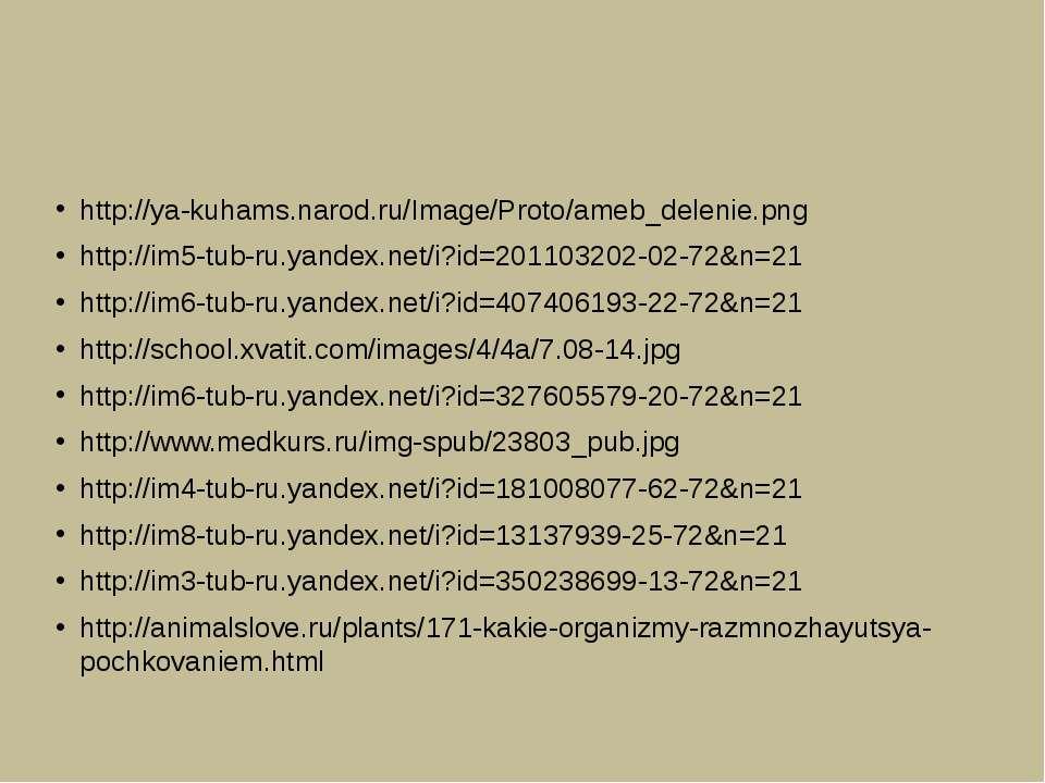 http://ya-kuhams.narod.ru/Image/Proto/ameb_delenie.png http://im5-tub-ru.yand...