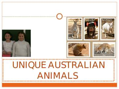 UNIQUE AUSTRALIAN ANIMALS