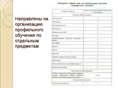 Направлены на организацию профильного обучения по отдельным предметам