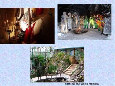 зимний сад Деда Мороза.