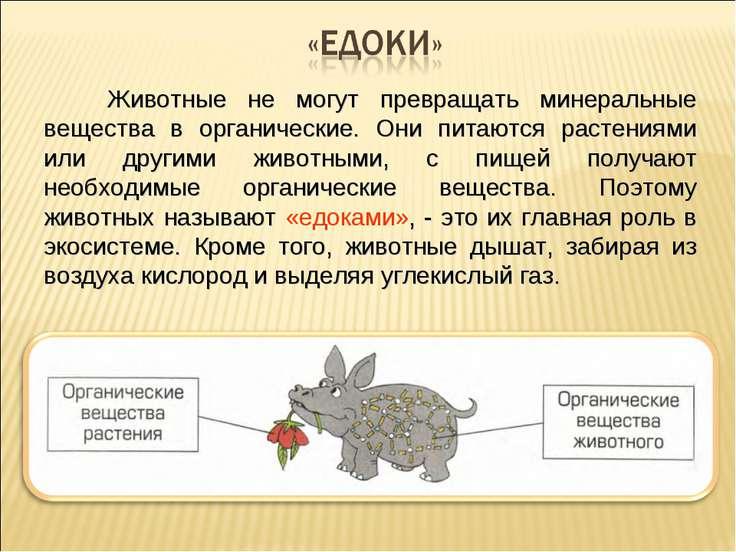 Животные не могут превращать минеральные вещества в органические. Они питаютс...