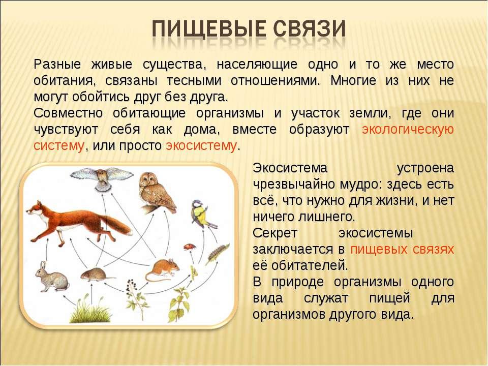 Разные живые существа, населяющие одно и то же место обитания, связаны тесным...