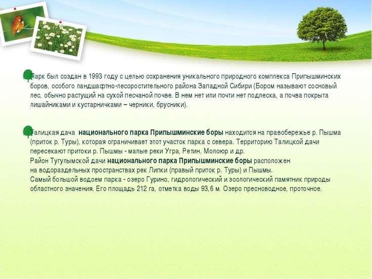 Парк был создан в 1993 году с целью сохранения уникального природного комплек...