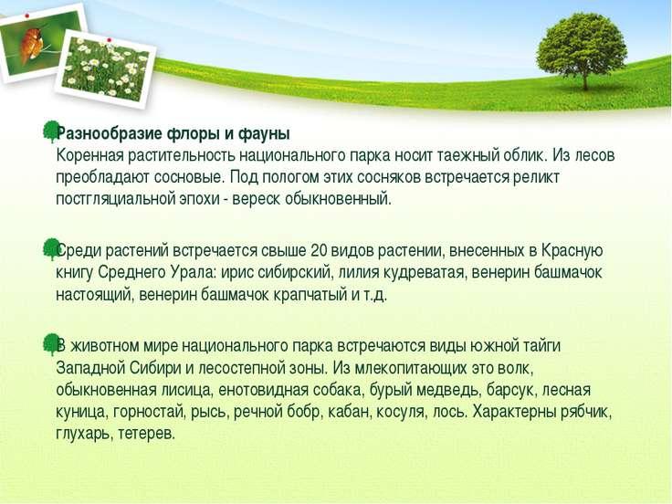 Разнообразие флоры и фауны Коренная растительность национального парка носит ...