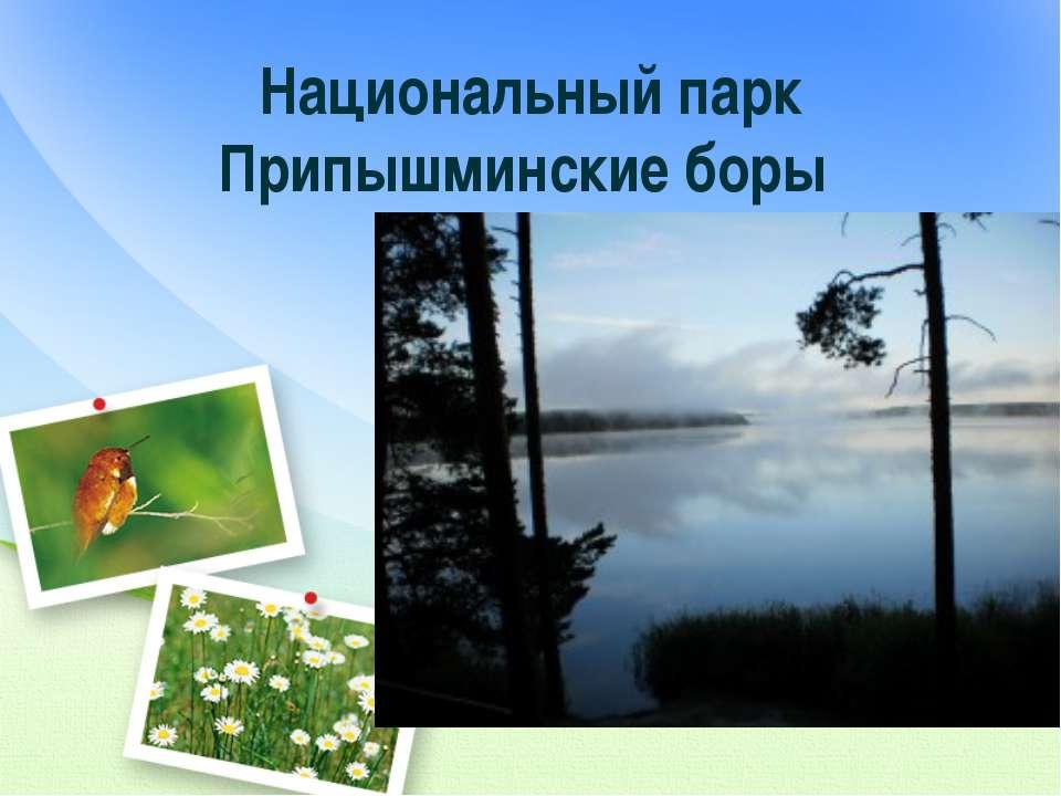 Национальный парк Припышминские боры