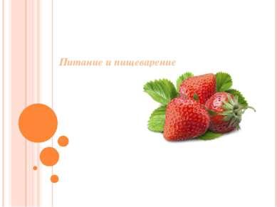 Питание и пищеварение