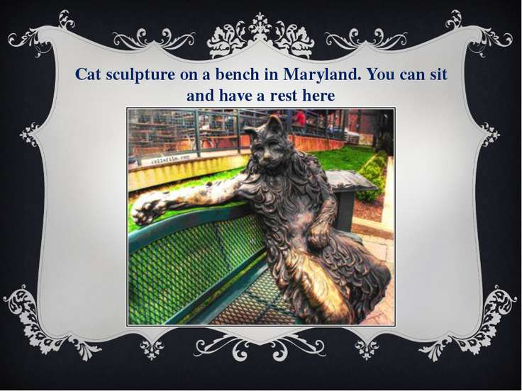 Cat sculpture on a bench in Maryland. You can sit and have a rest here