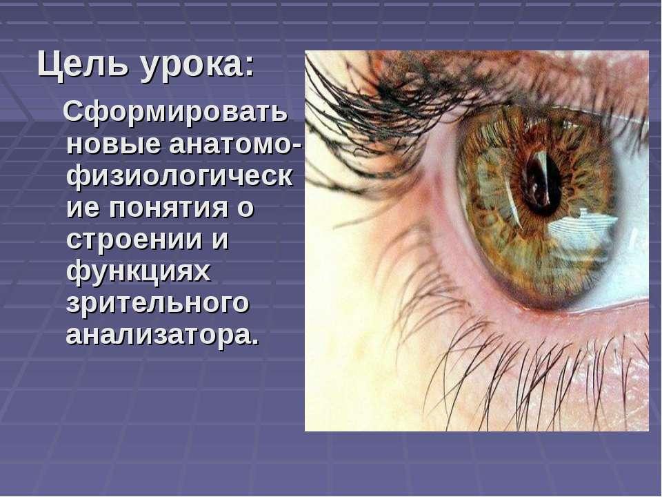 Цель урока: Сформировать новые анатомо-физиологические понятия о строении и ф...