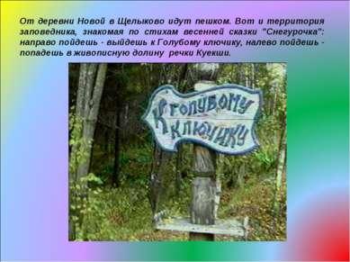 От деревни Новой в Щелыково идут пешком. Вот и территория заповедника, знаком...