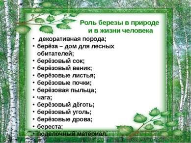 Роль березы в природе и в жизни человека декоративная порода; берёза – дом дл...