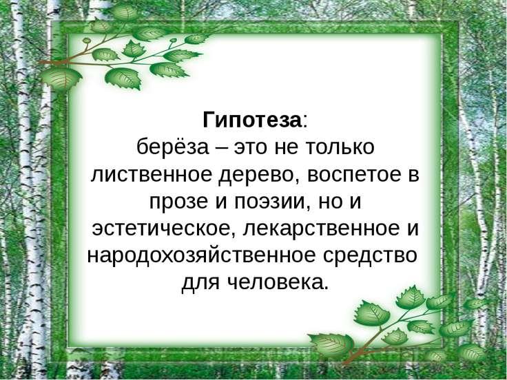 Гипотеза: берёза – это не только лиственное дерево, воспетое в прозе и поэзии...
