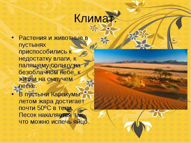 Климат. Растения и животные в пустынях приспособились к недостатку влаги, к п...