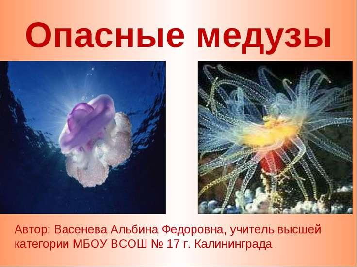 Опасные медузы Автор: Васенева Альбина Федоровна, учитель высшей категории МБ...