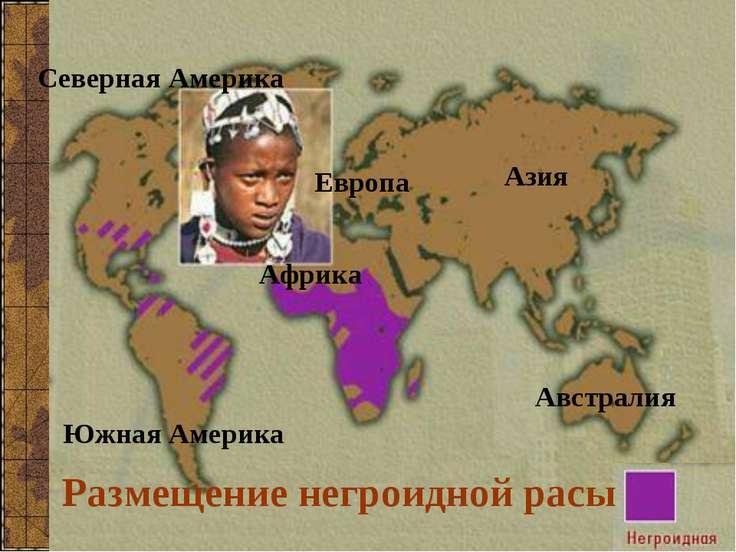 Размещение негроидной расы Северная Америка Южная Америка Азия Европа Африка ...