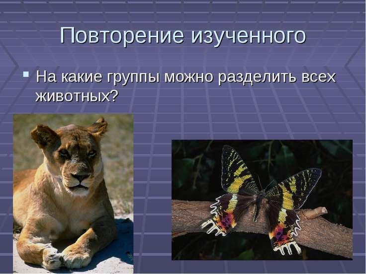 Повторение изученного На какие группы можно разделить всех животных?