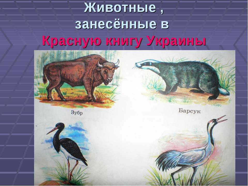 Животные , занесённые в Красную книгу Украины