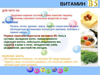 ВИТАМИН B5 ДЛЯ ЧЕГО ОН ИСТОЧНИКИ Первые признаки недостатка витамина В5: боль...