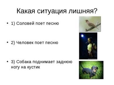 Какая ситуация лишняя? 1) Соловей поет песню 2) Человек поет песню 3) Собака ...