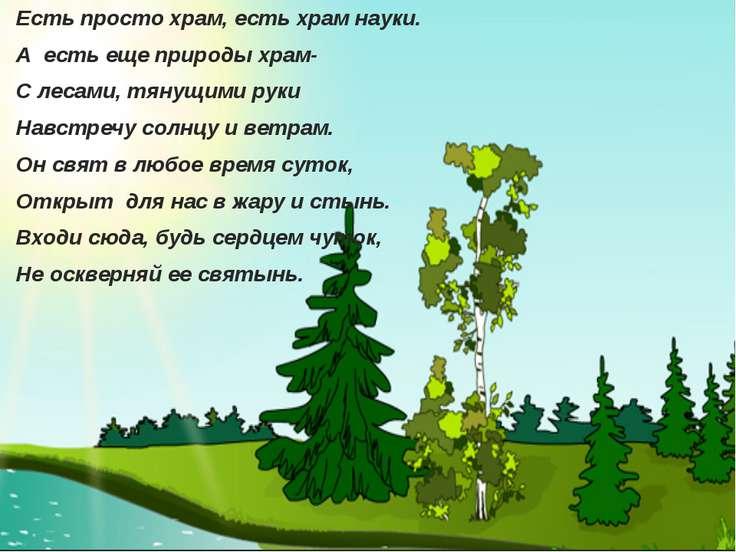 Есть просто храм, есть храм науки. А есть еще природы храм- С лесами, тянущим...
