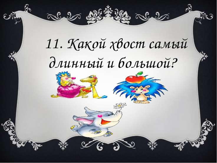 11. Какой хвост самый длинный и большой?