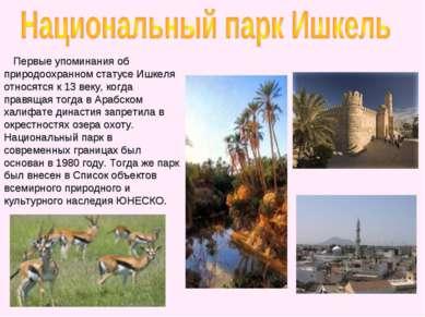Первые упоминания об природоохранном статусе Ишкеля относятся к 13 веку, когд...