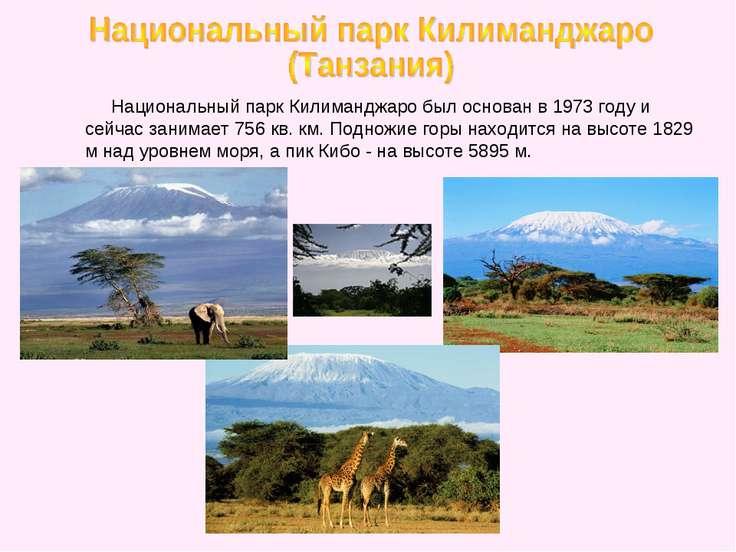 Национальный парк Килиманджаро был основан в 1973 году и сейчас занимает 756 ...